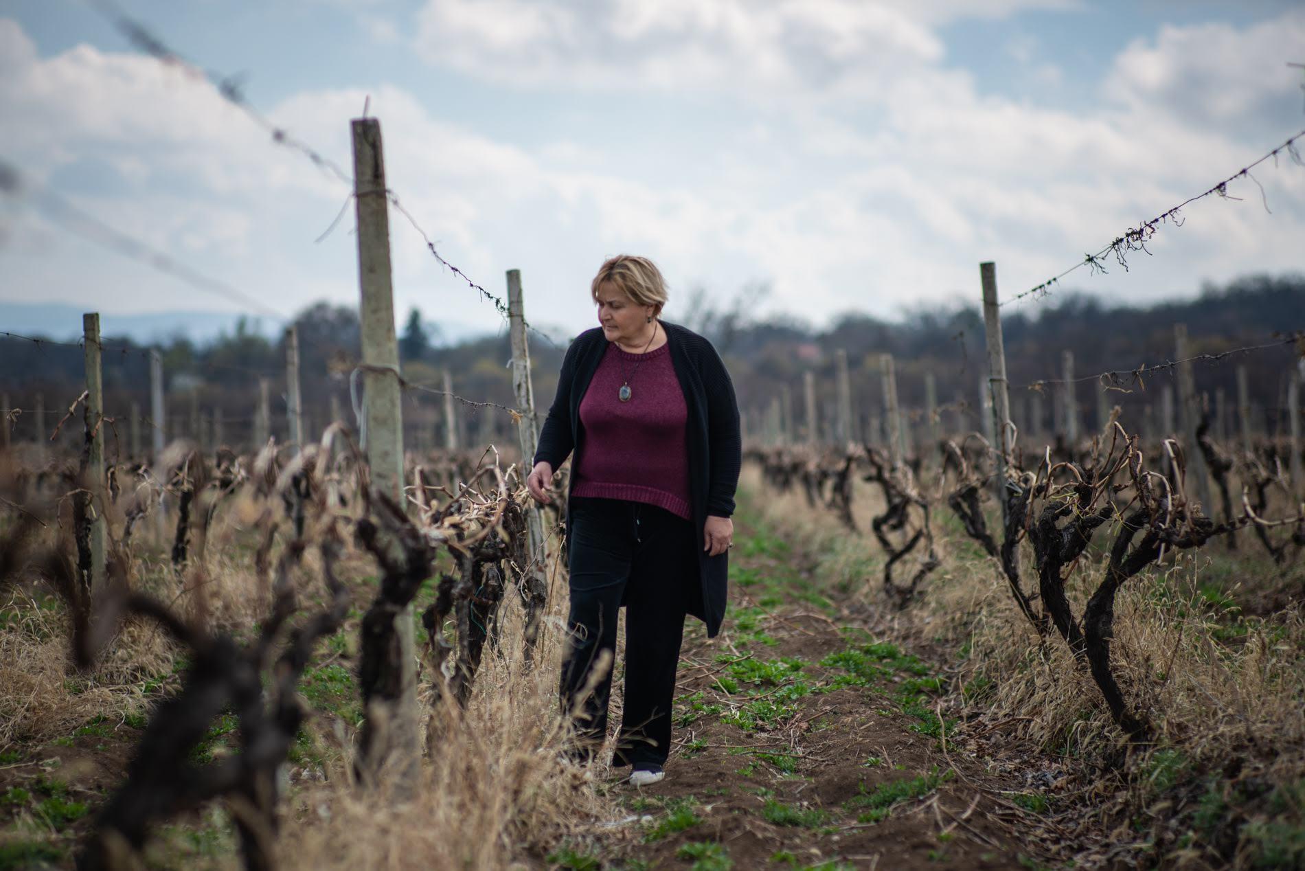 'All men in the village are talking about my vineyard', Marina Sirbilashvili says.  Photo: Tamuna Chkareuli/OC Media.