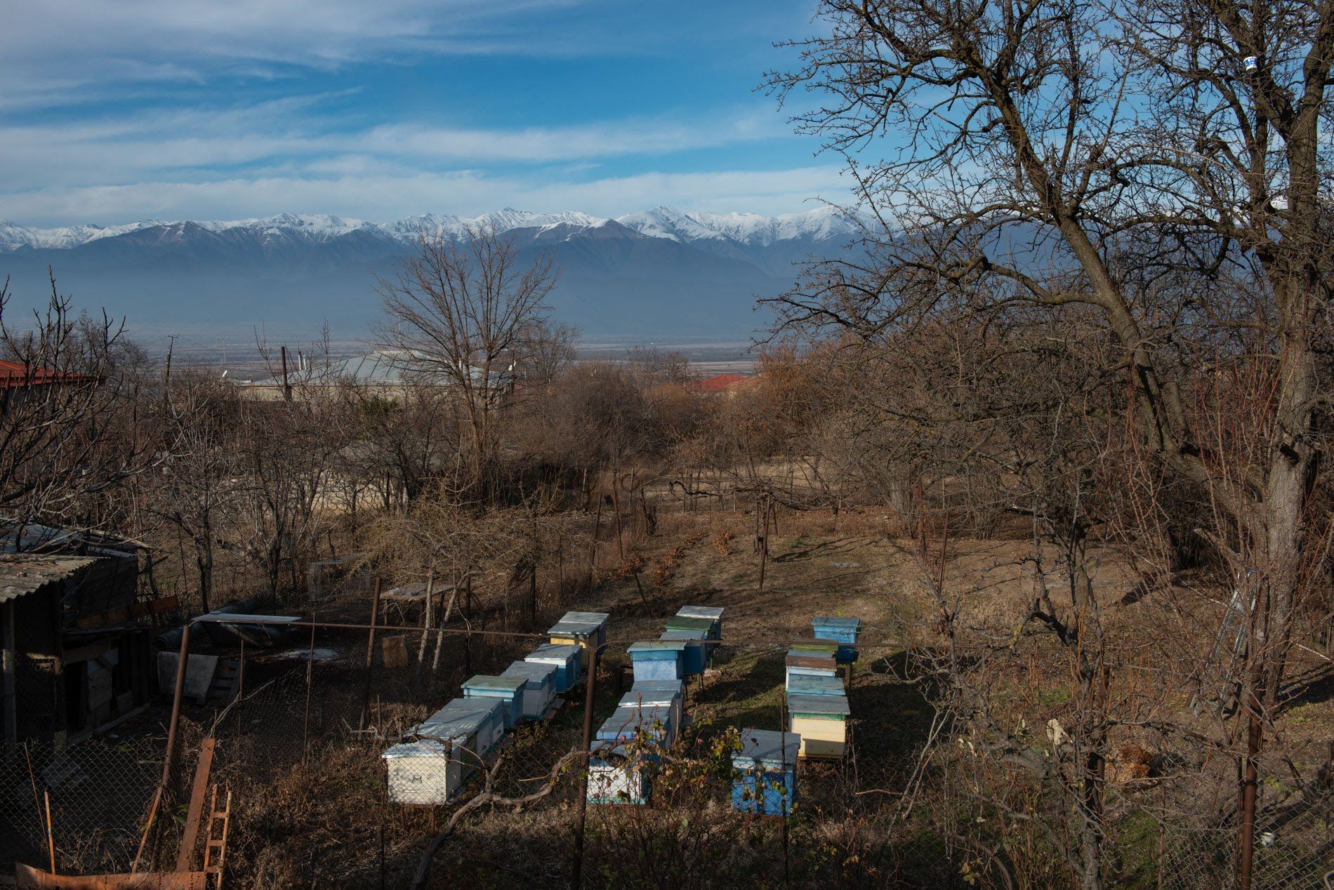 At this time of year, there should be much more snow on the Caucasus mountains, Lali says.  Photo: Tamuna Chkareuli/OC Media.